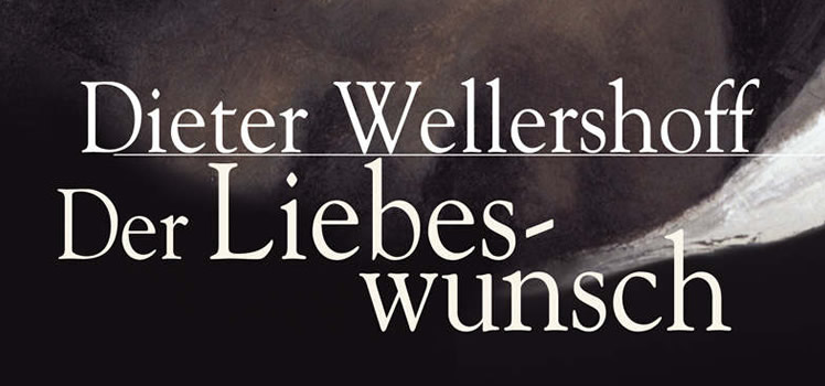 Dieter Wellershoff: Der Liebeswunsch